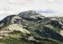 Alpaca Peak Δ *