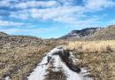 A Winter Ramble